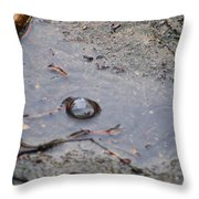 The Water Bubble Throw Pillow