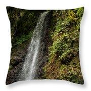 The Water Falling At The Yoro Waterfall In Gifu, Japan, November Throw Pillow