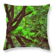 The Water Margins - Nutclough Woods Throw Pillow