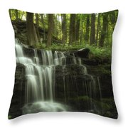 The Waterfall In The Forest Throw Pillow