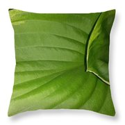 The Waterslide Throw Pillow