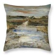 The Waterway Throw Pillow