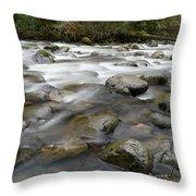 The Way A River Flows Throw Pillow