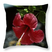 The Way You Think Throw Pillow