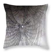 The Web We Weave Throw Pillow by Margaret Hamilton