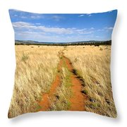 The Westward Trail Throw Pillow