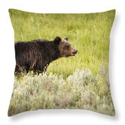 The Wet Grizzly Throw Pillow