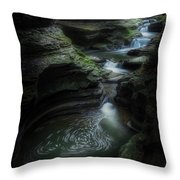 The Whirlpool Throw Pillow