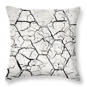 The White Painted Asphalt Shingle Throw Pillow