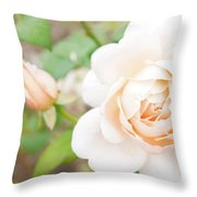 The White Washed Rose Throw Pillow