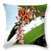 The Whole Ginger Throw Pillow