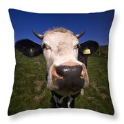 The Wideangled Cow  Throw Pillow