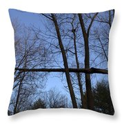 The Widowmaker Throw Pillow