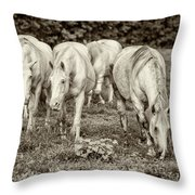 The Wild Horses Of Shannon County Mo 7r2_dsc1111_16-09-23 Throw Pillow