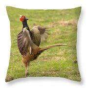 The Wild Rooster Throw Pillow
