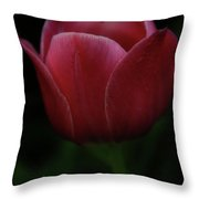 The Wild Tulip Throw Pillow