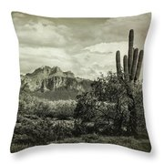 The Wild West Of The Superstitions  Throw Pillow