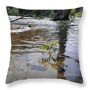 The Wilderness Throw Pillow