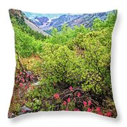 The Wildflowers Of Lundy Canyon Throw Pillow