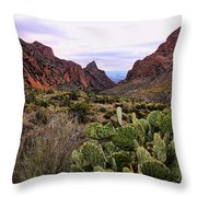 The Window 2 Throw Pillow