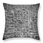 The Window That Once Was Throw Pillow