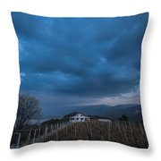 The Wineyard Throw Pillow