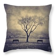 The Winter And The Benches Throw Pillow