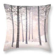 The Winter Forest Throw Pillow