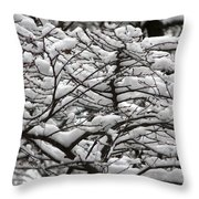 The Winter Has Arrived Throw Pillow