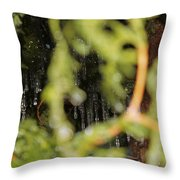The Winter Hides Beyond The Green Throw Pillow