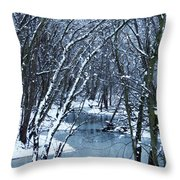 The Winter Stream  Throw Pillow