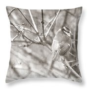 The Winter Time Throw Pillow