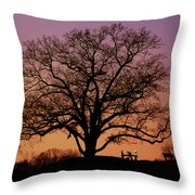 The Witness Throw Pillow