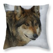 The Wolf 2 Throw Pillow