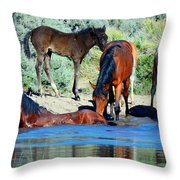 The Wonder Of It All Throw Pillow
