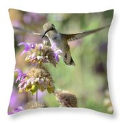 The Wonder Of Wings  Throw Pillow