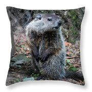 The Woodchuck Has To Pee Throw Pillow