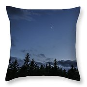 The Woods And The Moon 1 Throw Pillow