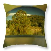 The World In Reflection Throw Pillow