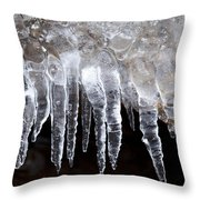 The World Of Ice Throw Pillow