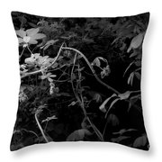 The World Of Vine Throw Pillow