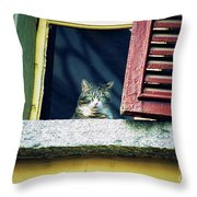 The World Outside Throw Pillow
