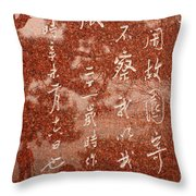 The Writings Of Lu Xun With Reflection Of Man Throw Pillow
