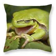 The Yawning Tree Frog Throw Pillow