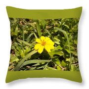 The Yellow Encamped Throw Pillow