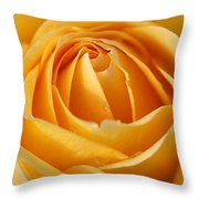 The Yellow Rose Throw Pillow