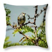 The  Yellow-rumped Warbler Throw Pillow