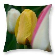 The Yellow Tulip Throw Pillow