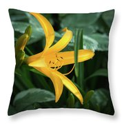 The Yelloy Lily Throw Pillow