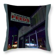 Their Undreaming Hours Throw Pillow by Guy Ricketts
